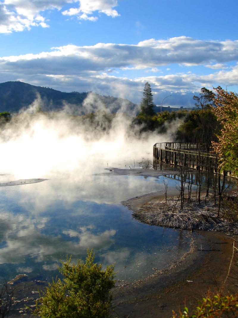Geothermal Activity in Kuirau Park Rotorua New Zealand.